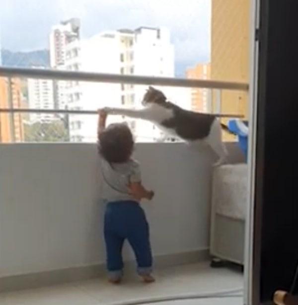 Un animal a devenit erou pentru un copil care era la un pas să cadă de pe balcon. Clipul a ajuns viral în mediul online