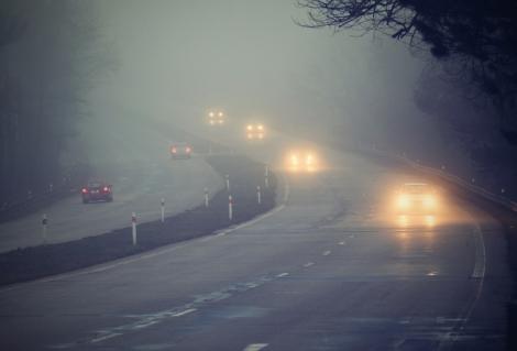 Mașini circulând în ceață