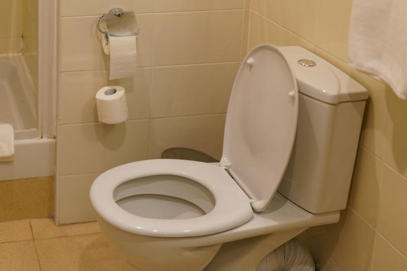 imagine cu un vas de toaleta