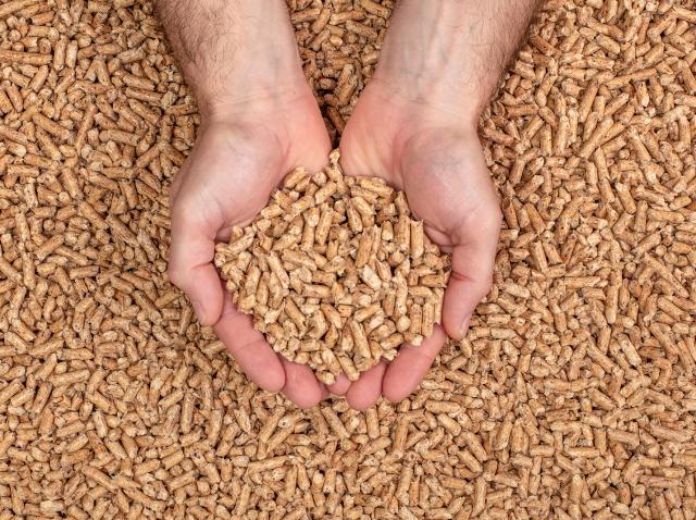 Imagine ilustrativă cu mâinile unui om, pline de peleți