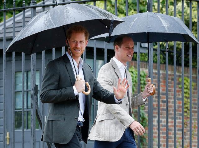 printul harry si printul william sub o umbrela
