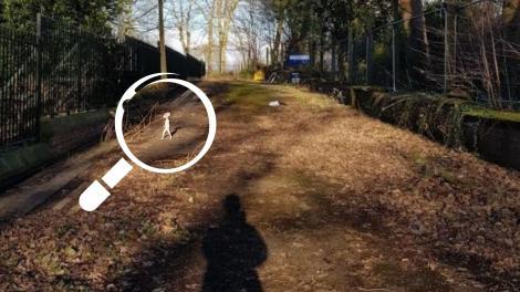 imagine din parc cu o lupa pusa pe figurina ce seamana cu extrarestru