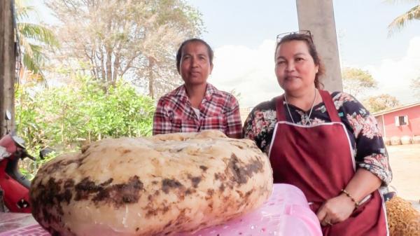 Femeia a arătat bucata de ambră gri pe care a găsit-o, în Thailanda