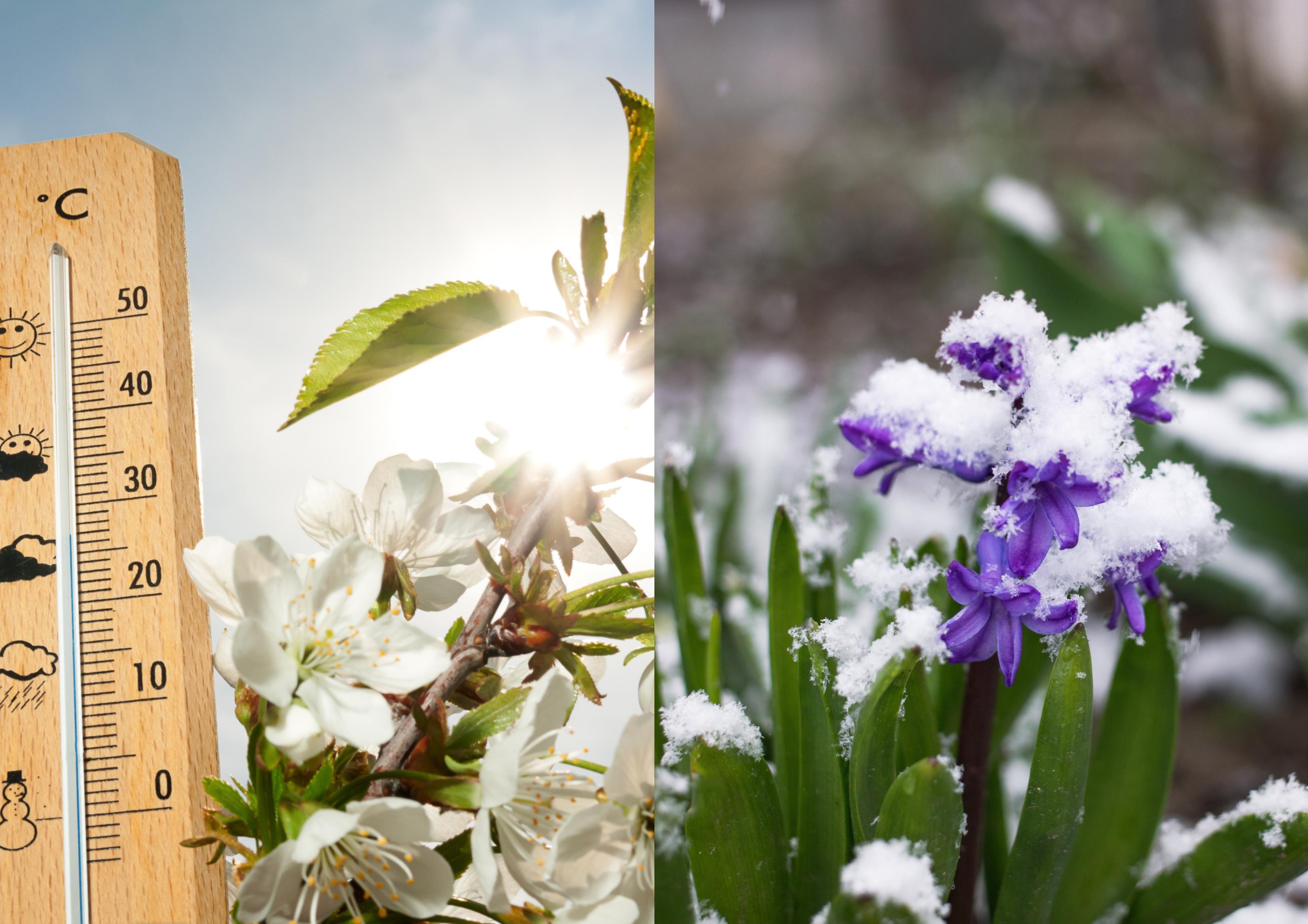Alertă ANM! România este împărțită între primăvară și iarnă. Unde se vor înregistra cele mai scăzute și cele mai mari temperaturi