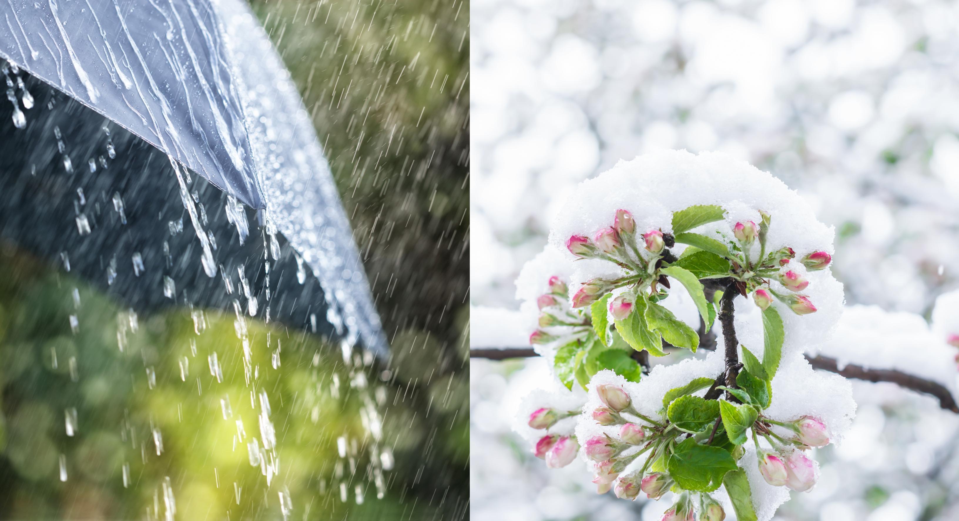 ANM anunță ninsori, lapoviță, ploi și viscol. Vremea se schimbă brusc, temperaturile scad și cu 15 grade
