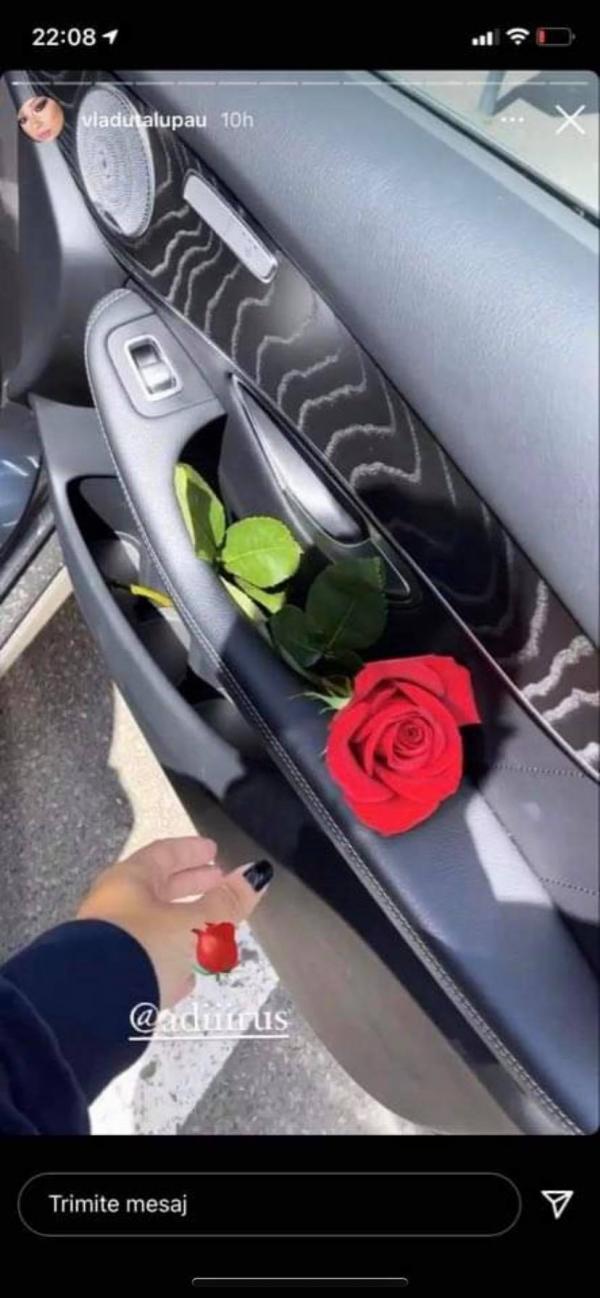 Trandafir roșu în portiera mașinii