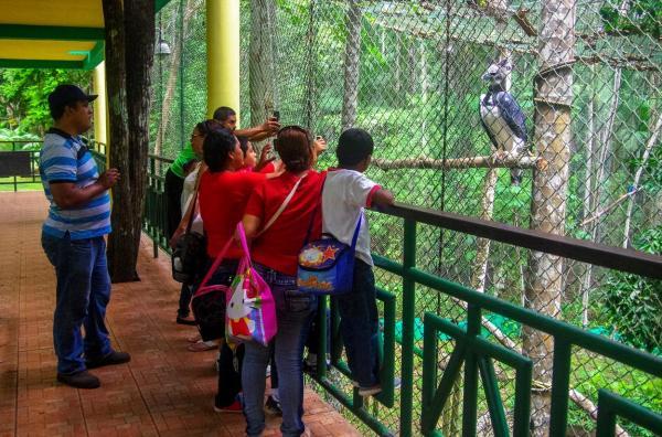 turiști vizitand o gradina zoologica unde se afla o acvila harpie