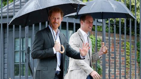 Acuzațiile pe care i le aduce Prințul Harry tatălui său.Ce îi reproșează Prințului Charles la 24 ani de la moartea Prințesei Diana