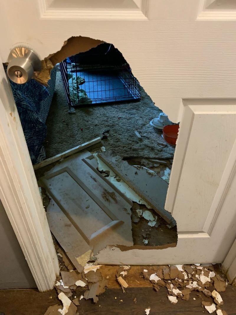 Ușa distrusă din casa americancei Vickie Shelton