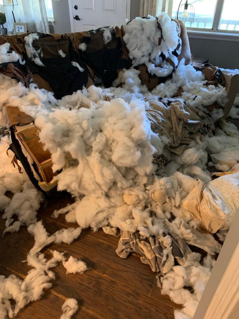 canapeaua  distrusă din casa americancei Vickie Shelton