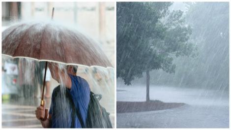 Colaj cu un om ținându-și umbrela și un copac bătut de ploaie