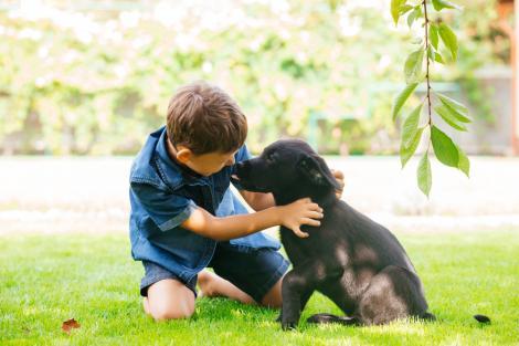 imagine cu un copil si un caine negru, la joaca in iarba