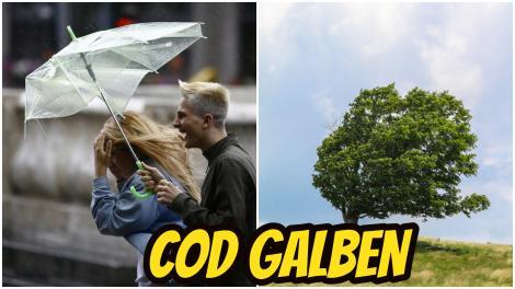 Alertă meteo! Meteorologii anunță vânt puternic în 27 de județe. În ce zone vor fi ploi și descărcări electrice