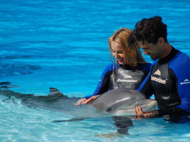 """Momente inedite în semifinală! """"Burlacul"""" merge să înoate cu delfinii"""