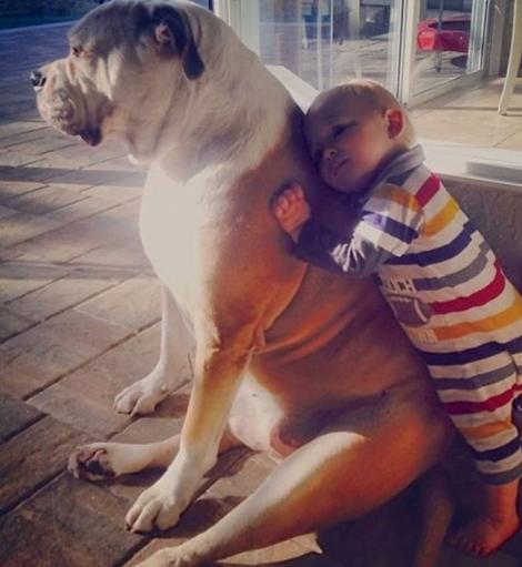 De ce e bine să îi iei copilului tău un animal de companie?! IMAGINILE care te vor convinge că e timpul pentru un nou membru al familiei