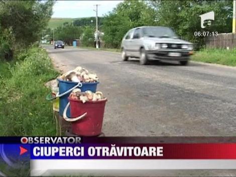 Neamt: Ciupercile otravitoare fac victime