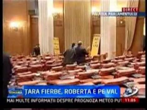 """VIDEO! Circ in Parlament: Politicienii se lupta in bannere si se injura """"romaneste"""""""