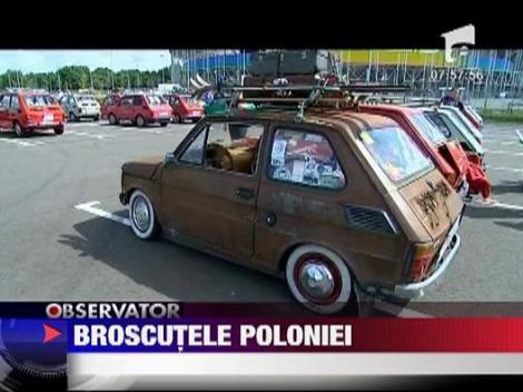 Parada broscutelor poloneze