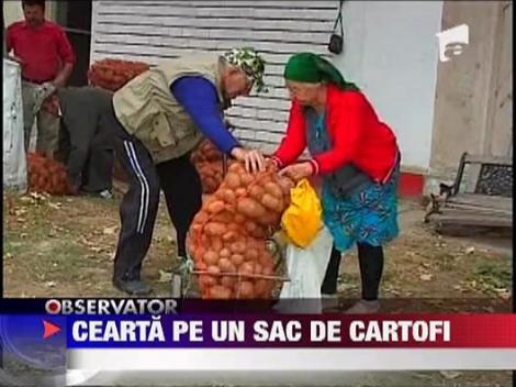 Nebunie la impartirea sacilor de cartofi pentru oamenii nevoiasi din Navodari!
