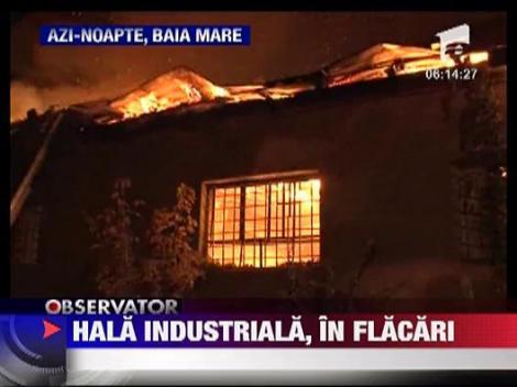 Hala industriala, in flacari la Baia Mare