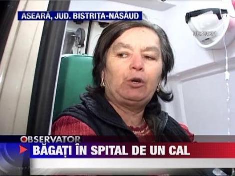 Bistrita Nasaud: Grav accident de circulatie provocat de un cal