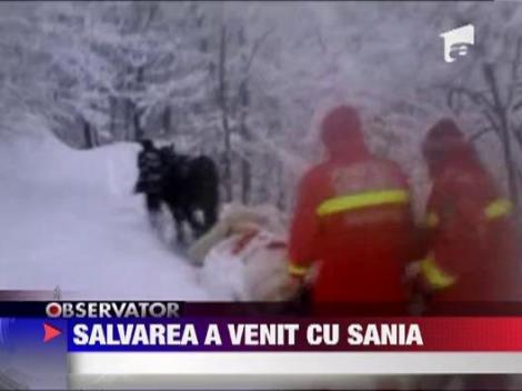 Un barbat a fost salvat cu o sanie trasa de un cal
