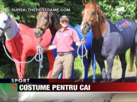 Costume pentru cai