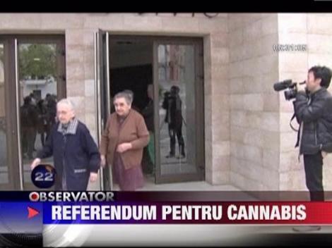Primarul unui sat spaniol a luat initiativa de a cultiva cannabis