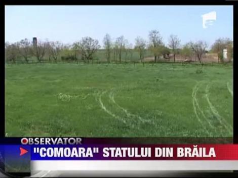 """""""Comoara"""" statului din Braila"""