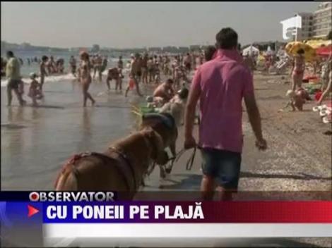 Cu poneii pe plaja