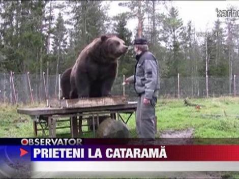 Prietenie fara teama intre padurari si doi ursi din Finlanda