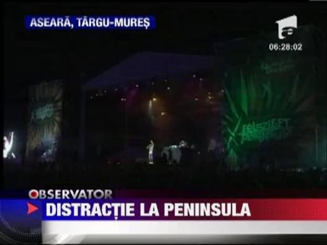 Vita de Vie si Tinie Tempah au facut show la festivalul Peninsula!