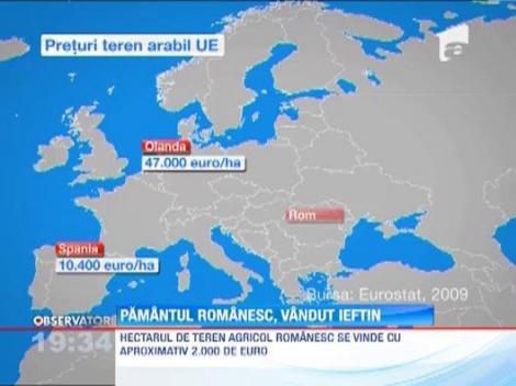 Pretul terenului din Romania, de 8 ori mai mic decat media europeana