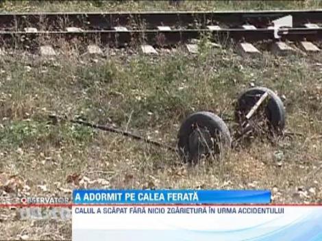 Barbat calcat de tren, dupa ce a adormit intr-o caruta pe calea ferata