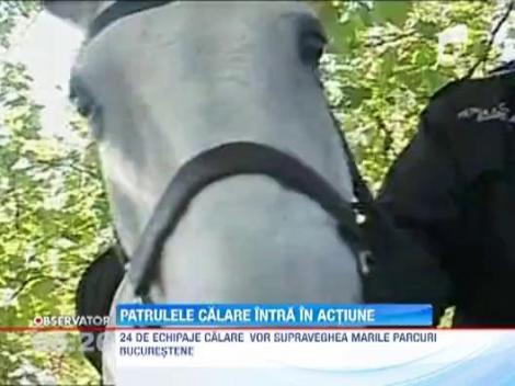 Politia Locala reintroduce patrulele calare in parcuri