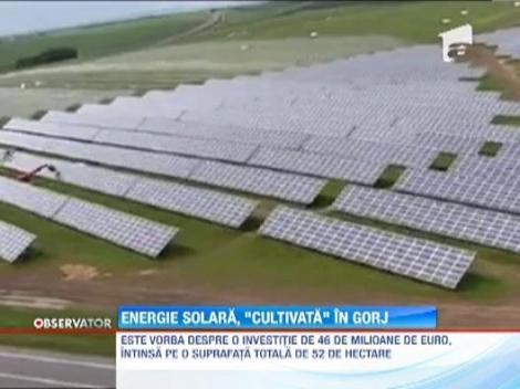 Cel mai mare parc fotovoltaic din Romania