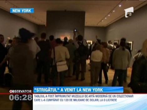 """Unul dintre cele mai scumpe tablouri din lume, """"Strigatul"""", va fi expus pentru sase luni la New York"""