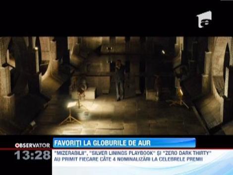 """Filmele favorite la """"Globurile de Aur 2013"""""""
