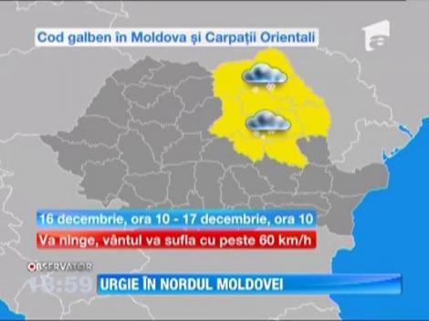 Nenorocire in nordul Moldovei! Patru judete sunt paralizate complet din cauza ninsorilor abundente
