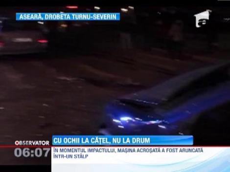 Accident grav intr-o intersectie din Drobeta Turnu-Severin! O soferita este acuzata ca a trecut pe rosu pentru ca isi alinta catelul in timp ce conducea