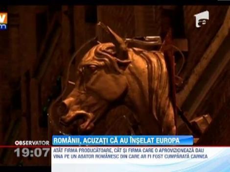 UPDATE / Lasagna din carnea de cal romanesc, comercializata in hipermarket-urile din Anglia