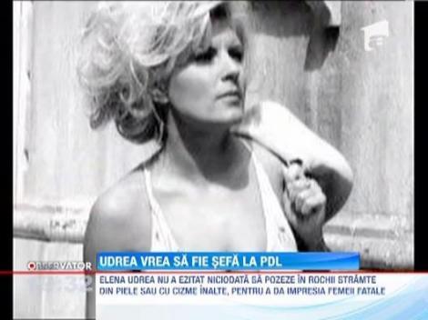 Elena Udrea vrea sa fie sefa in PDL iar pentru asta e gata sa se bata cu Vasile Blaga