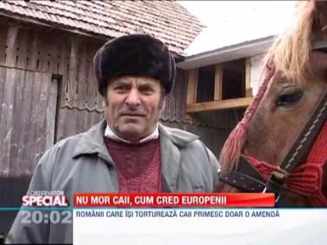 Nu mor caii, cum cred europenii