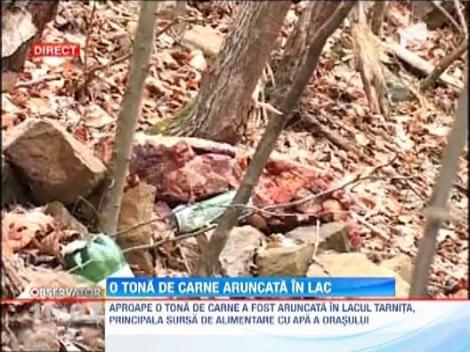 Alerta in Cluj: Sute de kilograme de carne au fost gasite aruncate in lacul Tarnita