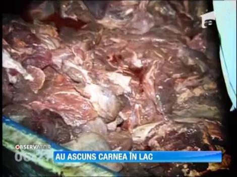 Scandalul carnii de cal in loc de vita ii sperie pe macelari. Autoritatile au descoperit o tona de carne pe fundul lacului Tarnita