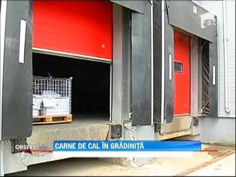 Mai multe gradinite din Capitala, pe lista clientilor depozitului de carne de cal din Blaj