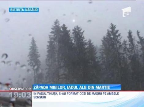 S-a intors iarna in Romania!