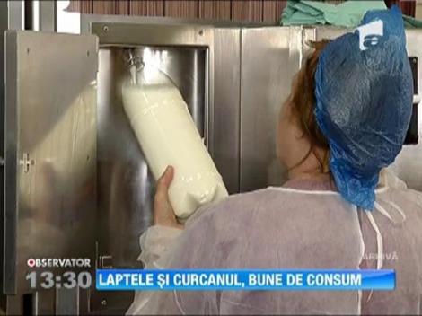 Ancheta laptelui contaminat cu aflatoxina, la final