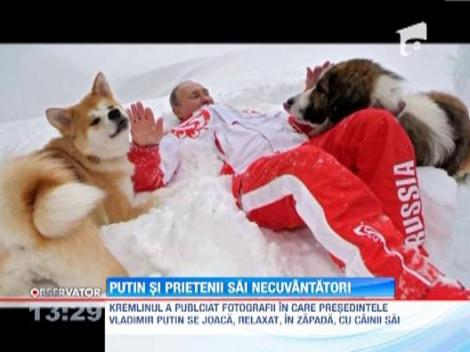 VIDEO: Vladimir Putin, un barbat sensibil...