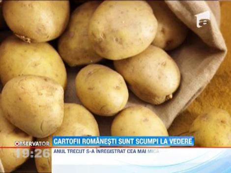 Caldura si lipsa ploilor au stricat deja recolta de cartofi
